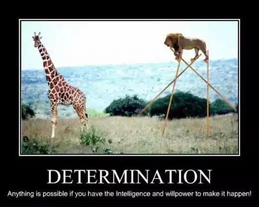 Motivation6